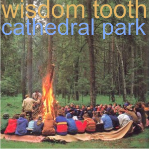 wisdom tooth - cathedral park